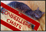 Conseill�re Chats